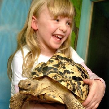 Twinlakes Reptile House : ©Lionel Heap 07977 597674.