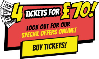 Day ticket offer